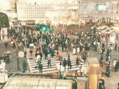 Shibuya Crossing - Tokyo, Japan