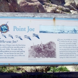 "Point Joe is the rocky southwestern end of Spanish Bay, so named because the explorer Gaspar de Portala landed at the Bay in 1769. Point Joe has been the site of several shipwrecks, and a sign about them is slightly farther up the bay. ""Who was Joe? Joe was a Chinese man who live alone in a driftwood home near this point in the early 1900s. He made a living selling trinkets to tourists and tending goats. No one knows for sure if the point was named after Joe or if he was named after the point."" (waymarking.com)"