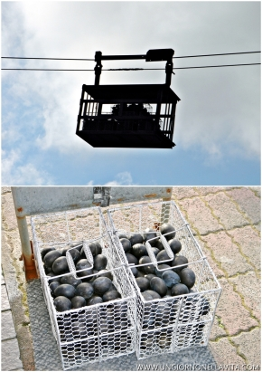 This is how they transport the eggs from the hot springs to the onsite store.