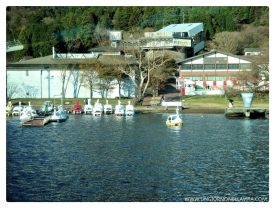 Swan Boats at Lake Ashi