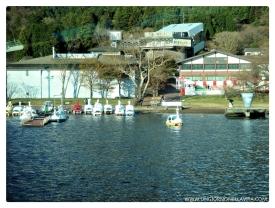 Swan Boats at Lake Ashi