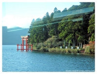 Getting close to the famous torii (gate) of Hakone Shrine.