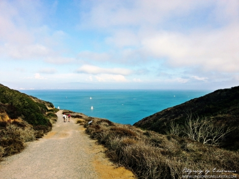 This photo was taken while hiking at Bayside Trail in Point Loma (SD, CA).