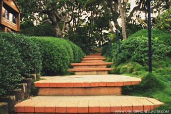 The stairs heading to the gardens.