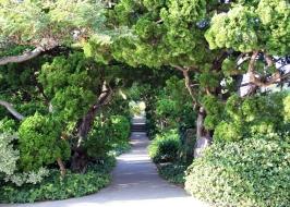 Love the garden! :)