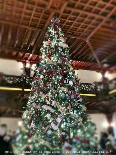 wpid-christmas-tree.jpg.jpeg