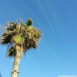 Beautiful bright sky! 😍