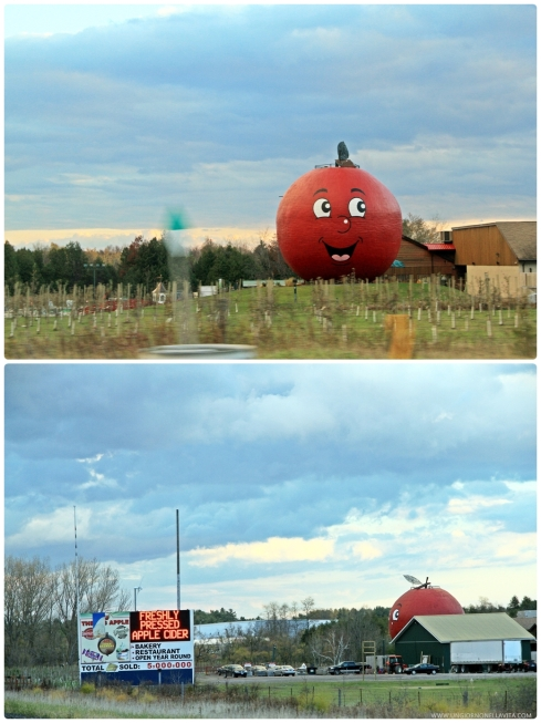 An unexpected pit stop! ;-) We couldn't resist stopping by because the giant apple was smiling at us. ^_^